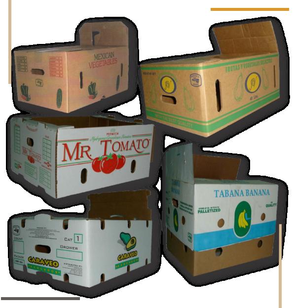 carton-kraft-producto5